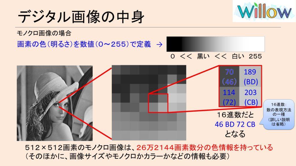 白黒画像の色情報